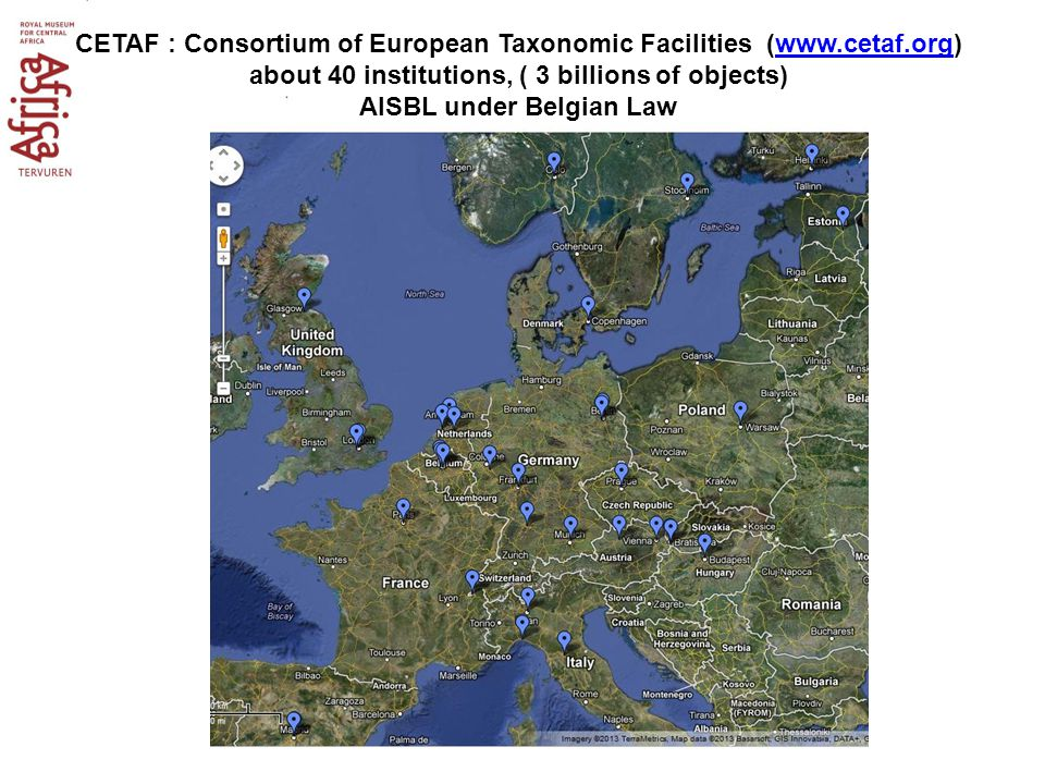 CETAF : Consortium of European Taxonomic Facilities (www.cetaf.org) about 40 institutions, ( 3 billions of objects)www.cetaf.org AISBL under Belgian L