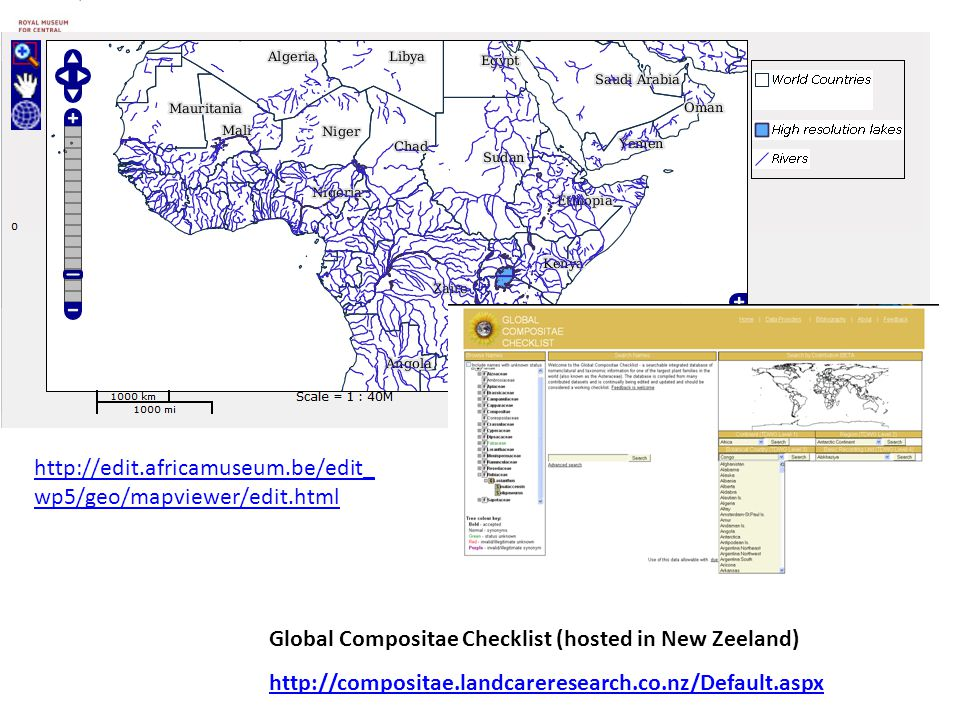 Global Compositae Checklist (hosted in New Zeeland) http://compositae.landcareresearch.co.nz/Default.aspx http://edit.africamuseum.be/edit_ wp5/geo/mapviewer/edit.html