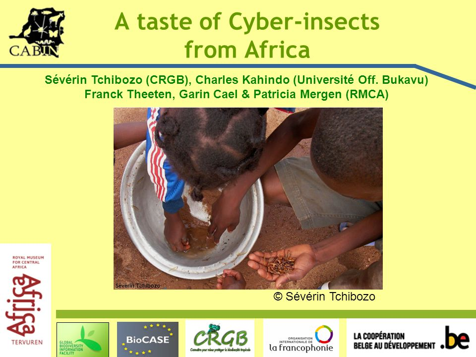 A taste of Cyber-insects from Africa Sévérin Tchibozo Sévérin Tchibozo (CRGB), Charles Kahindo (Université Off.