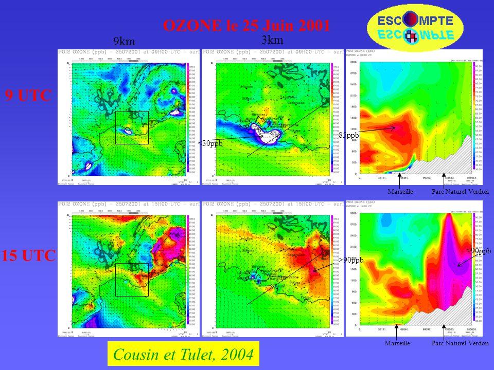OZONE le 25 Juin 2001 9 UTC 9km 3km <30ppb Parc Naturel VerdonMarseille 85ppb MarseilleParc Naturel Verdon >90ppb 15 UTC >90ppb Cousin et Tulet, 2004