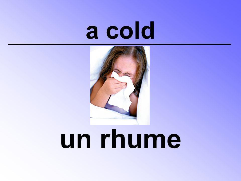 a cold un rhume