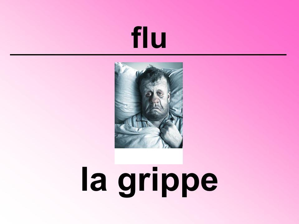flu la grippe