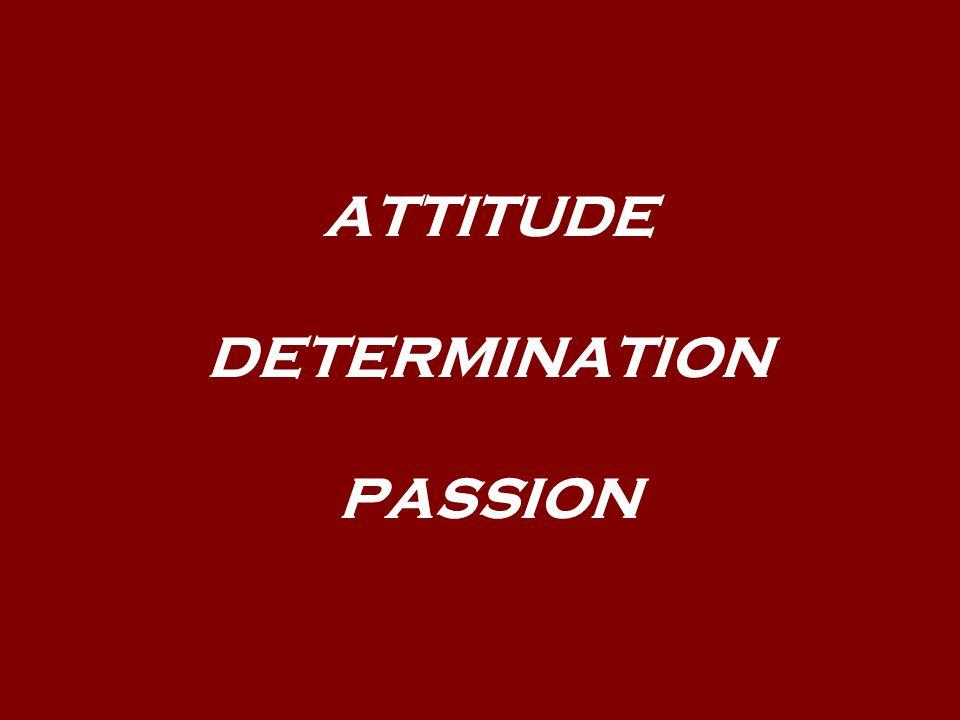 ATTITUDE DETERMINATION PASSION