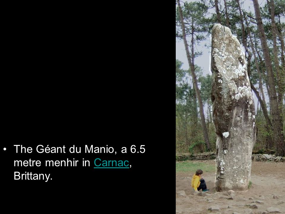 The Géant du Manio, a 6.5 metre menhir in Carnac, Brittany.Carnac