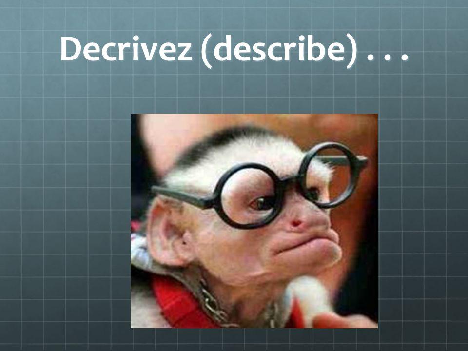 Decrivez (describe)...