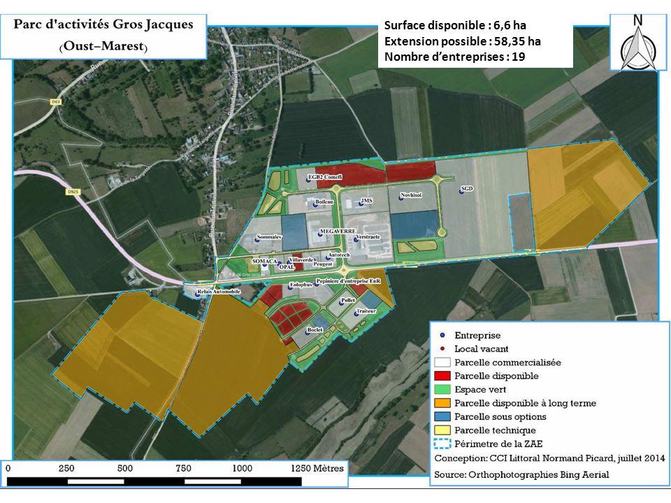 Surface disponible : 6,6 ha Extension possible : 58,35 ha Nombre d'entreprises : 19