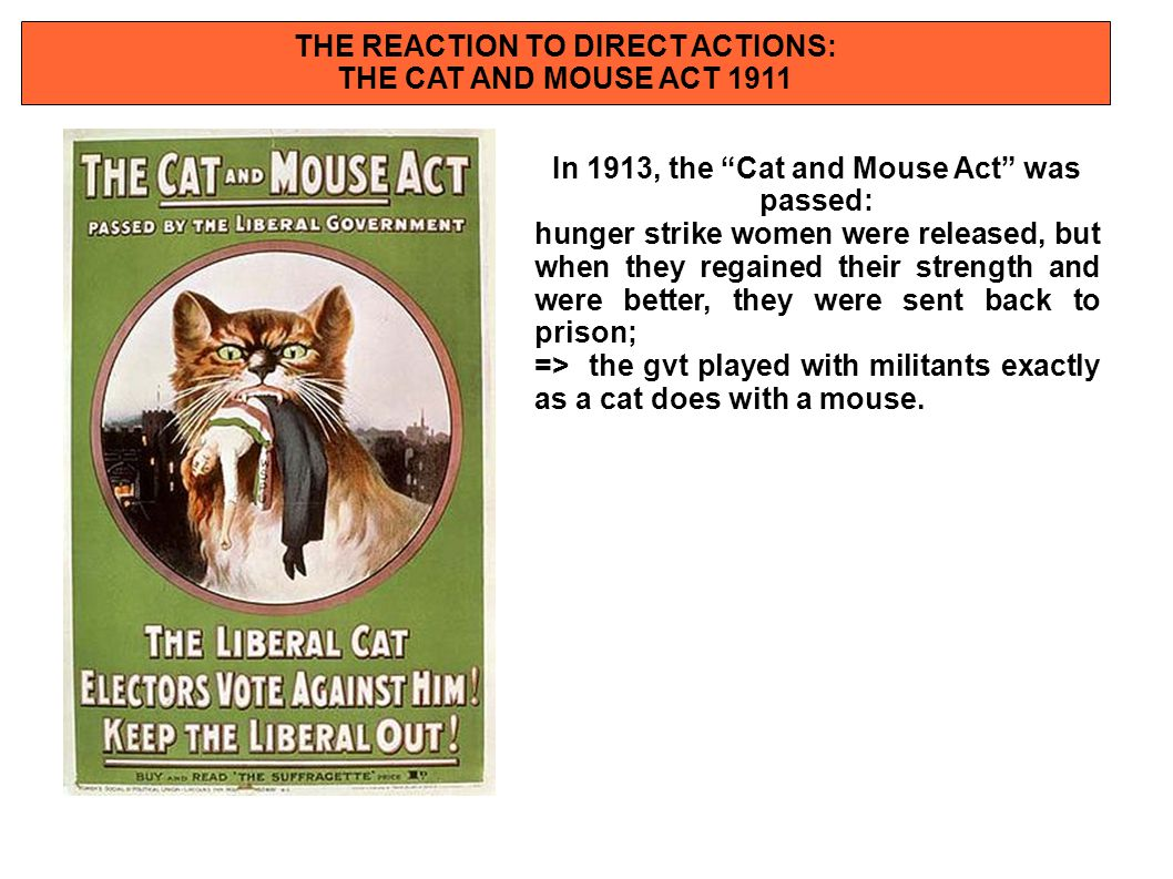 """THE REACTION TO DIRECT ACTIONS: THE CAT AND MOUSE ACT 1911 In 1913, the """"Cat and Mouse Act"""" was passed: hunger strike women were released, but when th"""