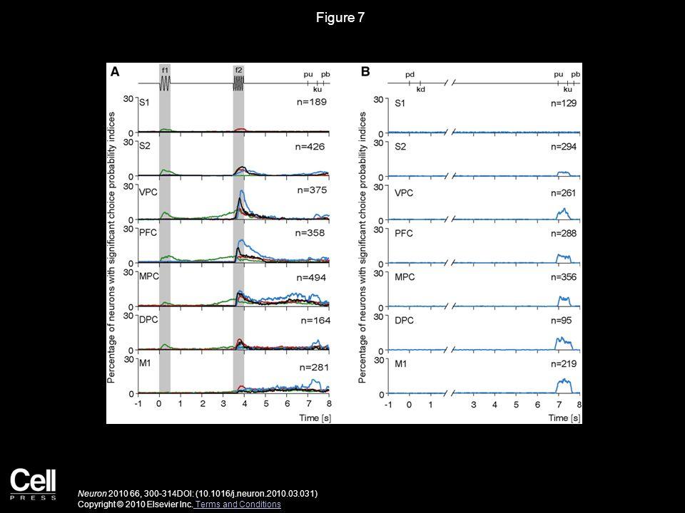 Figure 7 Neuron 2010 66, 300-314DOI: (10.1016/j.neuron.2010.03.031) Copyright © 2010 Elsevier Inc. Terms and Conditions Terms and Conditions