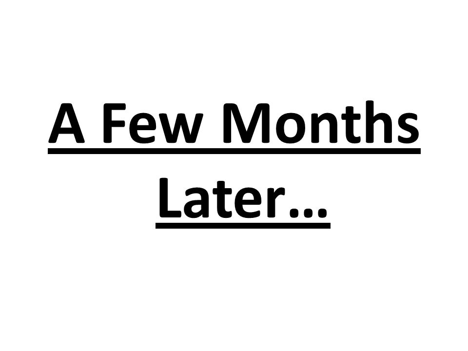 A Few Months Later…