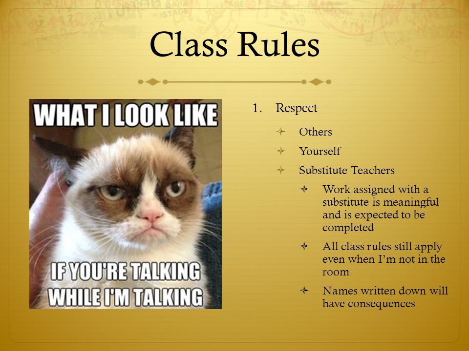 Class Rules 1.Respect  Others  Yourself  Substitute Teachers  Work assigned with a substitute is meaningful and is expected to be completed  All