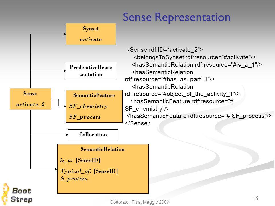 N. Calzolari 19 Dottorato, Pisa, Maggio 2009 Sense activate_2 Synset activate PredicativeRepre sentation SemanticFeature SF_chemistry SF_process Collo