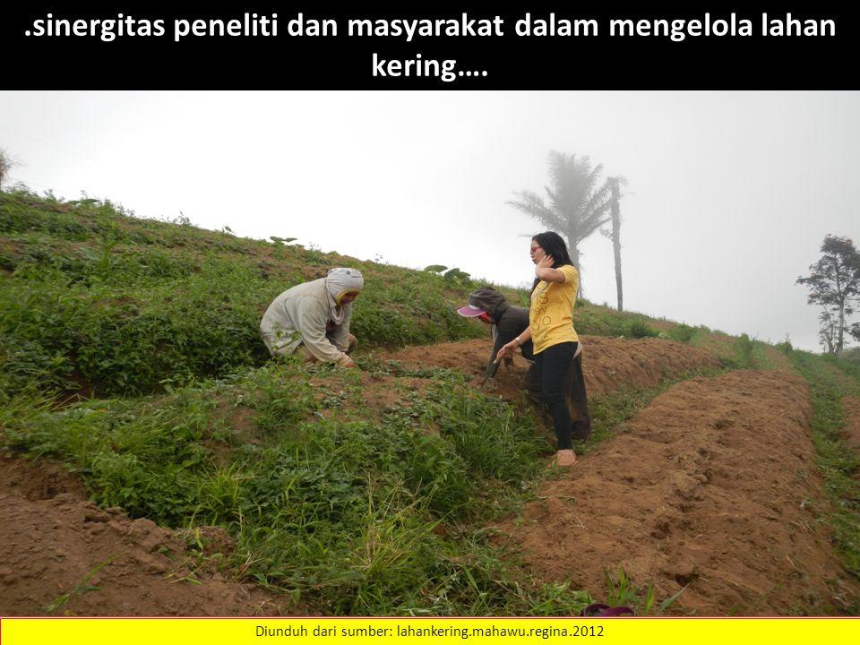 Diunduh dari sumber: lahankering.mahawu.regina.2012.sinergitas peneliti dan masyarakat dalam mengelola lahan kering….