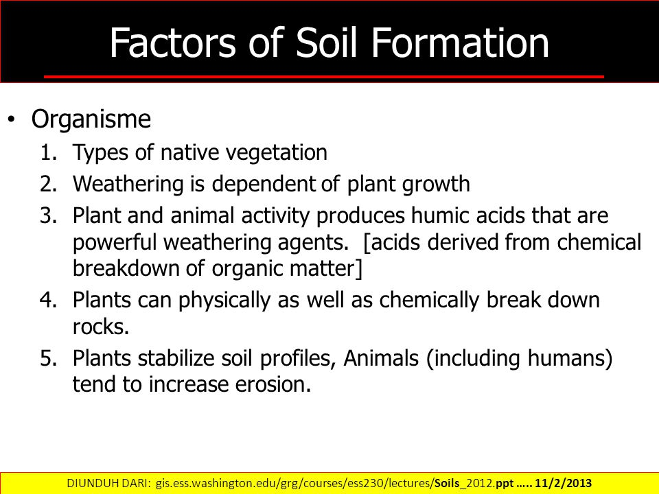 Factors of Soil Formation Organisme 1.Types of native vegetation 2.Weathering is dependent of plant growth 3.Plant and animal activity produces humic acids that are powerful weathering agents.