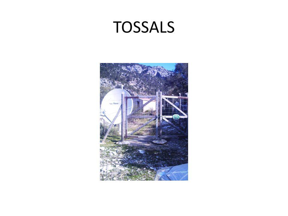 TOSSALS