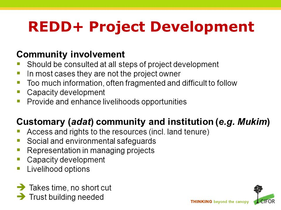 THINKING beyond the canopy REDD+ Project Development Community involvement  Should be consulted at all steps of project development  In most cases t