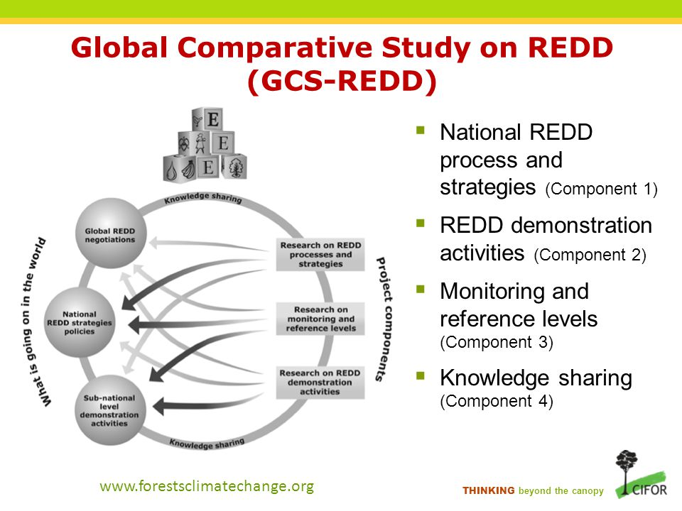 THINKING beyond the canopy Global Comparative Study on REDD (GCS-REDD)  National REDD process and strategies (Component 1)  REDD demonstration activities (Component 2)  Monitoring and reference levels (Component 3)  Knowledge sharing (Component 4) www.forestsclimatechange.org