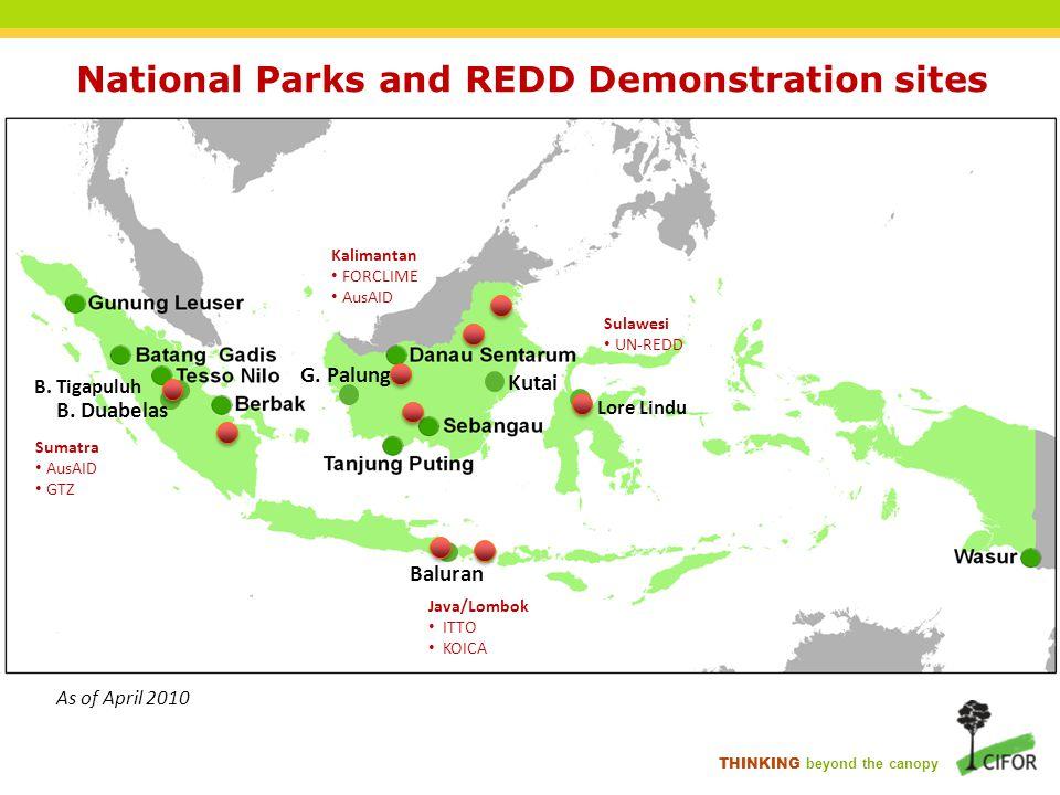 THINKING beyond the canopy National Parks and REDD Demonstration sites B. Tigapuluh B. Duabelas G. Palung Kutai Baluran Sumatra AusAID GTZ Kalimantan