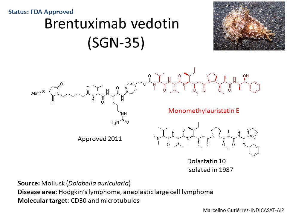 Brentuximab vedotin (SGN-35) Status: FDA Approved Monomethylauristatin E Dolastatin 10 Isolated in 1987 Source: Mollusk (Dolabella auricularia) Disease area: Hodgkin's lymphoma, anaplastic large cell lymphoma Molecular target: CD30 and microtubules Approved 2011 Marcelino Gutiérrez-INDICASAT-AIP