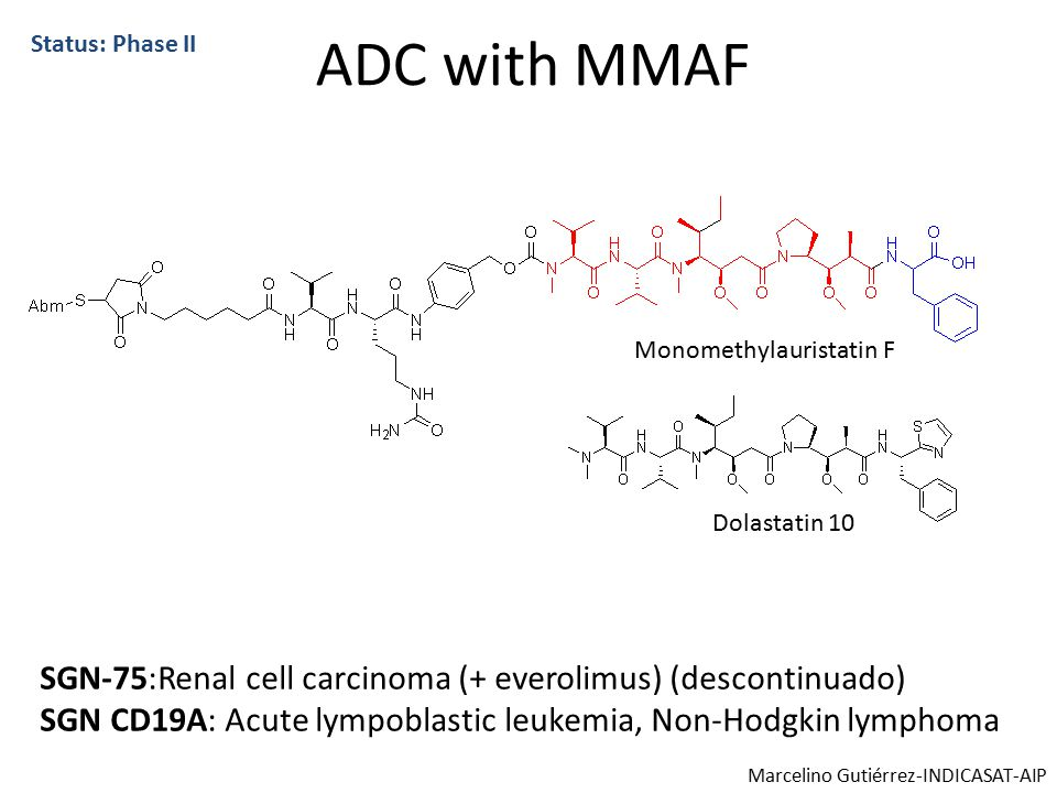 ADC with MMAF SGN-75:Renal cell carcinoma (+ everolimus) (descontinuado) SGN CD19A: Acute lympoblastic leukemia, Non-Hodgkin lymphoma Status: Phase II Dolastatin 10 Monomethylauristatin F Marcelino Gutiérrez-INDICASAT-AIP