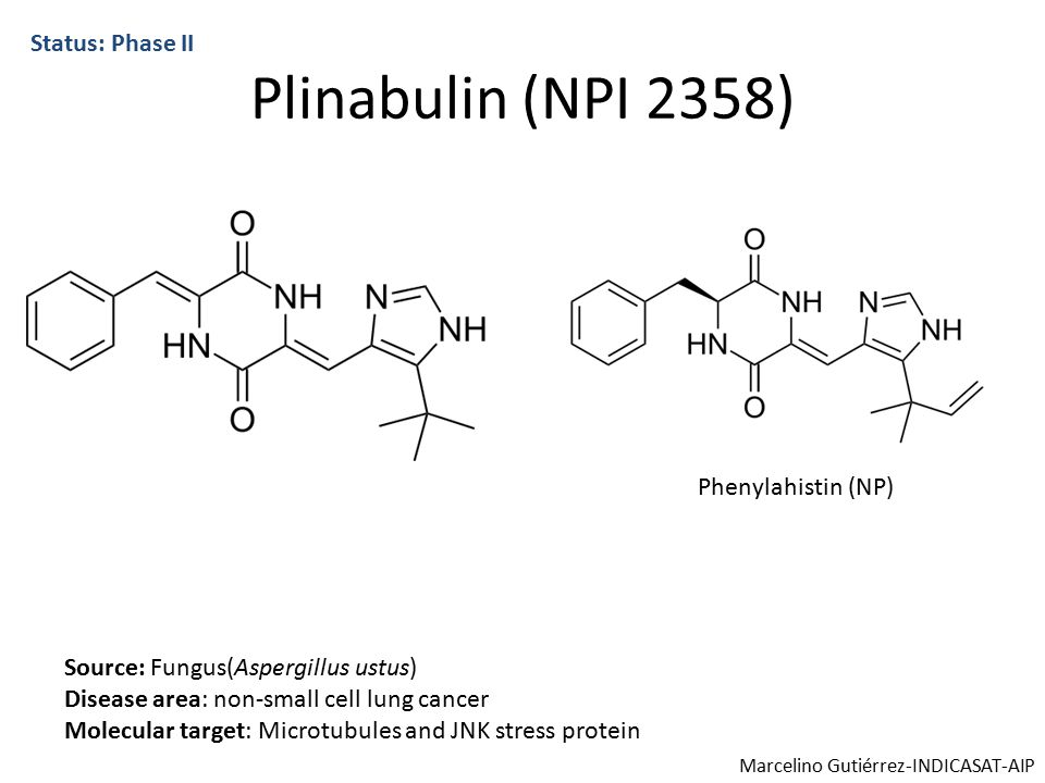 Plinabulin (NPI 2358) Status: Phase II Source: Fungus(Aspergillus ustus) Disease area: non-small cell lung cancer Molecular target: Microtubules and JNK stress protein Phenylahistin (NP) Marcelino Gutiérrez-INDICASAT-AIP