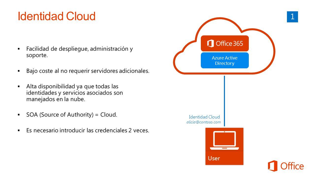 Azure Active Directory User Identidad Cloud alicia@contoso.com