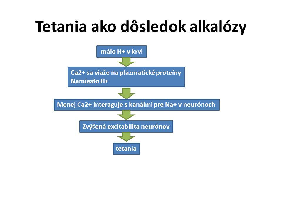 Tetania ako dôsledok alkalózy málo H+ v krvi Ca2+ sa viaže na plazmatické proteíny Namiesto H+ Menej Ca2+ interaguje s kanálmi pre Na+ v neurónoch Zvý