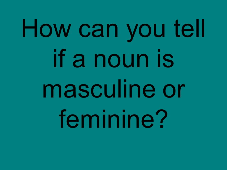 How can you tell if a noun is masculine or feminine?