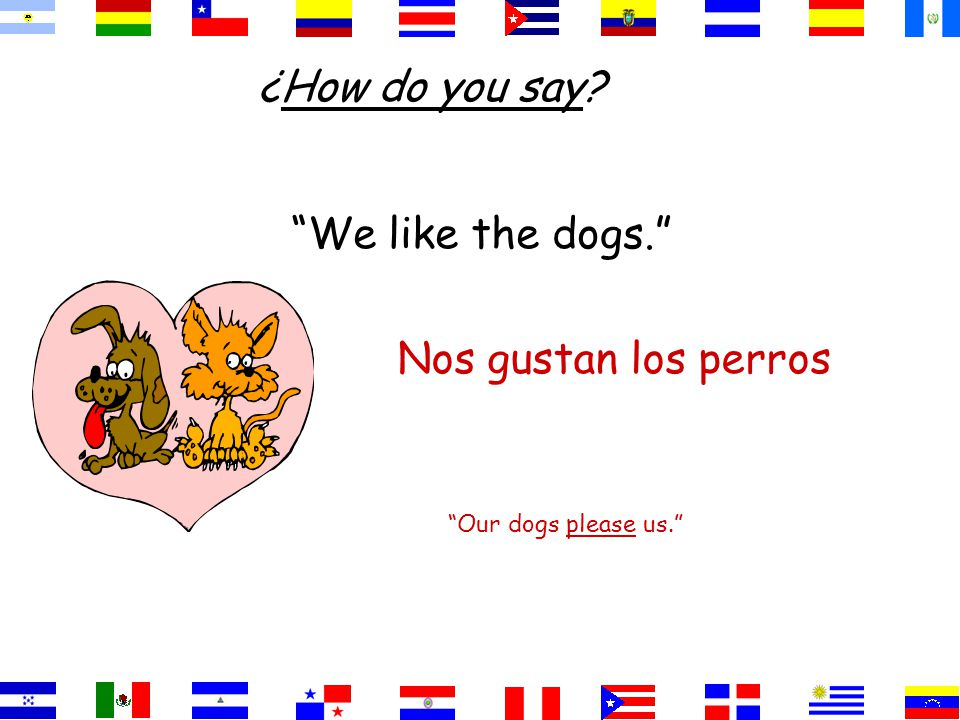 We like the dogs. Our dogs please us. Nos gustan los perros ¿How do you say