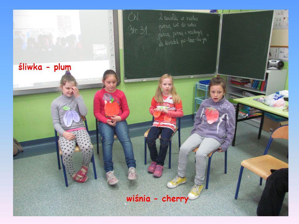 śliwka - plum wiśnia - cherry