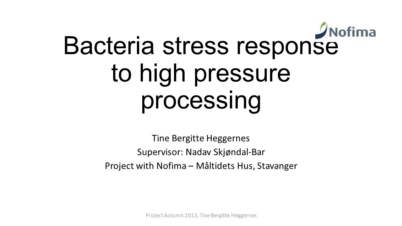 Bacteria stress response to high pressure processing Tine Bergitte Heggernes Supervisor: Nadav Skjøndal-Bar Project with Nofima – Måltidets Hus, Stavanger Project Autumn 2013, Tine Bergitte Heggernes