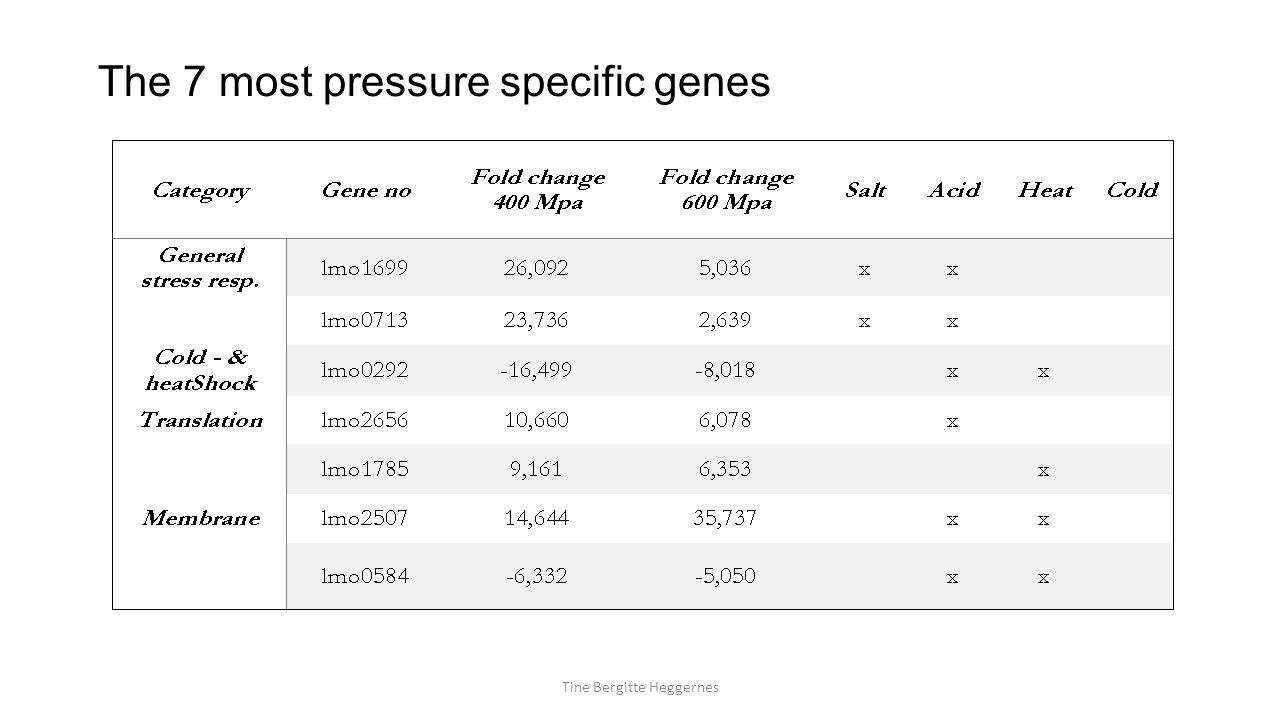 The 7 most pressure specific genes Tine Bergitte Heggernes