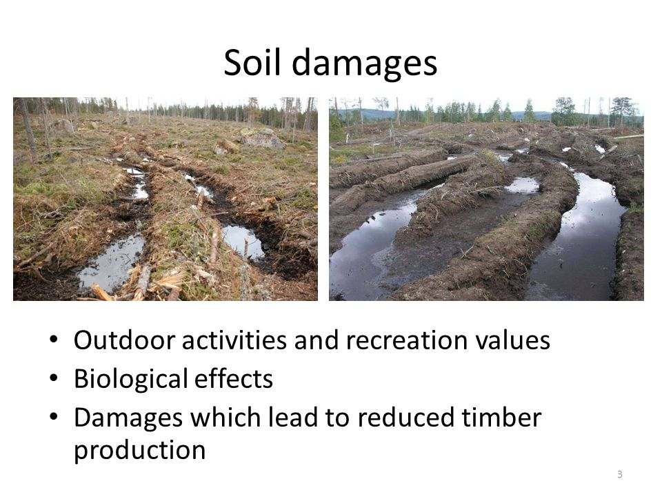 Soil damages Outdoor activities and recreation values Biological effects Damages which lead to reduced timber production 3