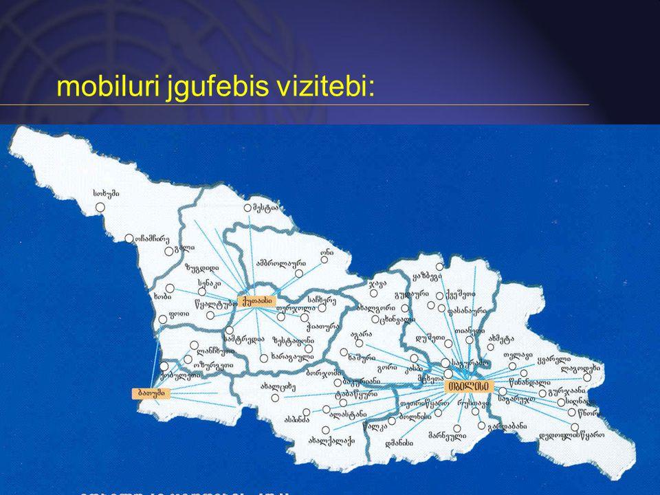 mobiluri jgufebis vizitebi: