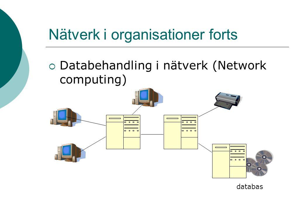 Nätverk i organisationer forts  Databehandling i nätverk (Network computing) databas