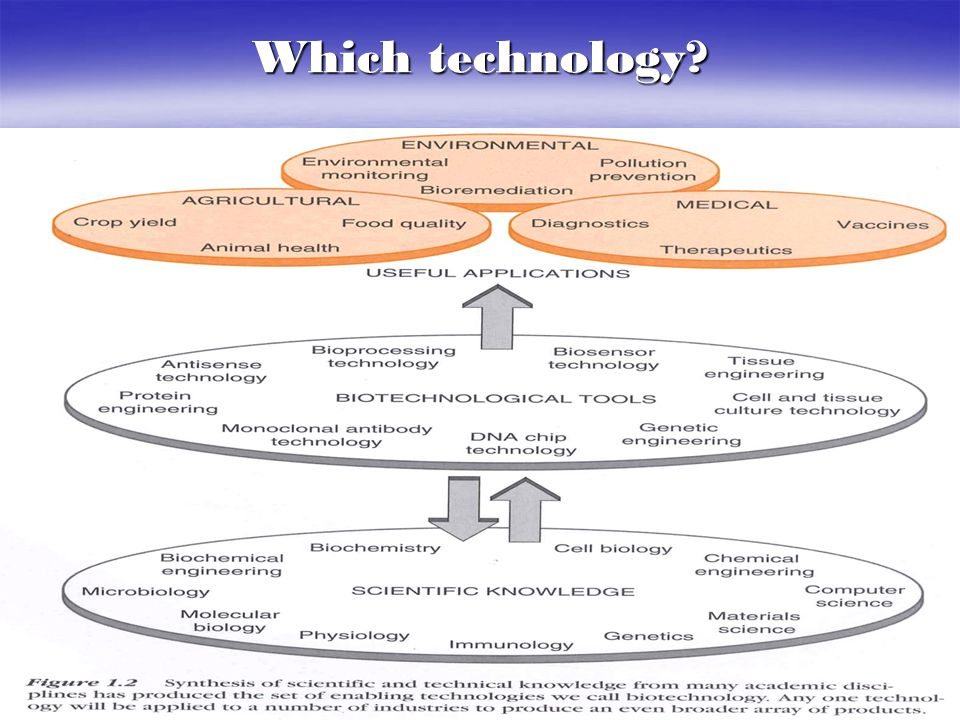 Which technology?