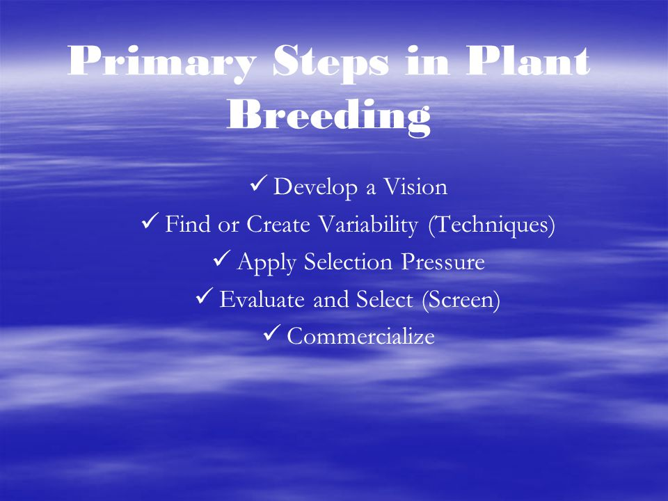 Primary Steps in Plant Breeding Develop a Vision Find or Create Variability (Techniques) Apply Selection Pressure Evaluate and Select (Screen) Commerc