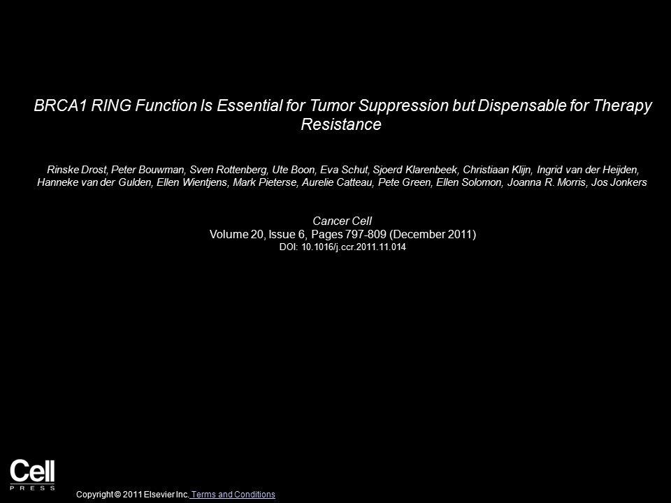 Figure 1 Cancer Cell 2011 20, 797-809DOI: (10.1016/j.ccr.2011.11.014) Copyright © 2011 Elsevier Inc.