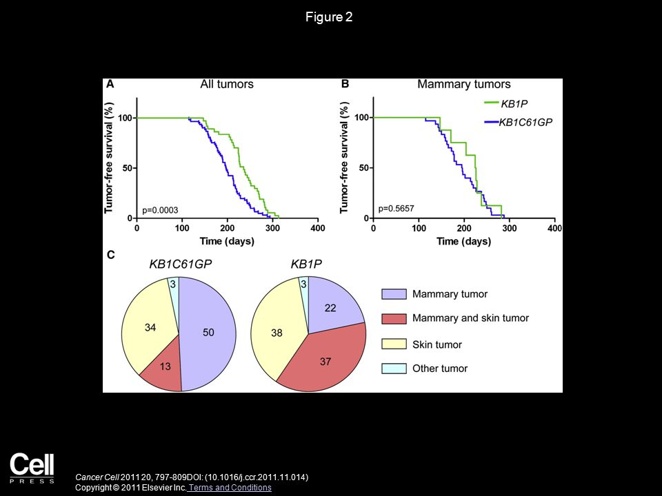 Figure 2 Cancer Cell 2011 20, 797-809DOI: (10.1016/j.ccr.2011.11.014) Copyright © 2011 Elsevier Inc.