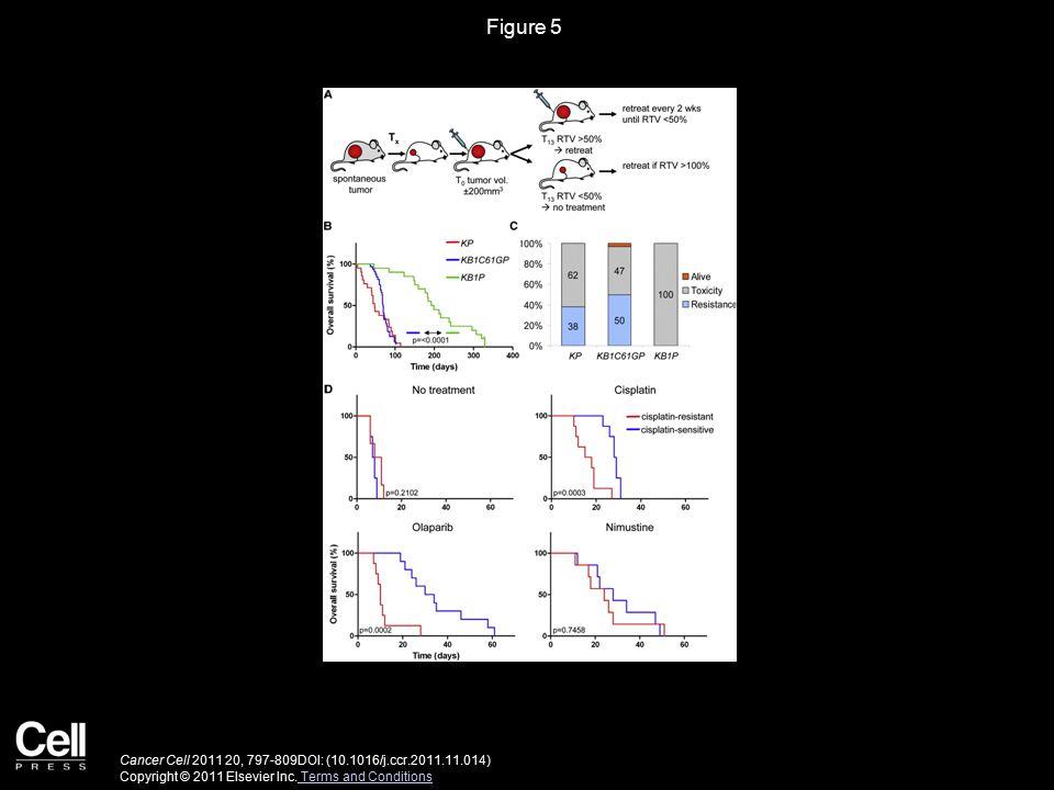 Figure 5 Cancer Cell 2011 20, 797-809DOI: (10.1016/j.ccr.2011.11.014) Copyright © 2011 Elsevier Inc.