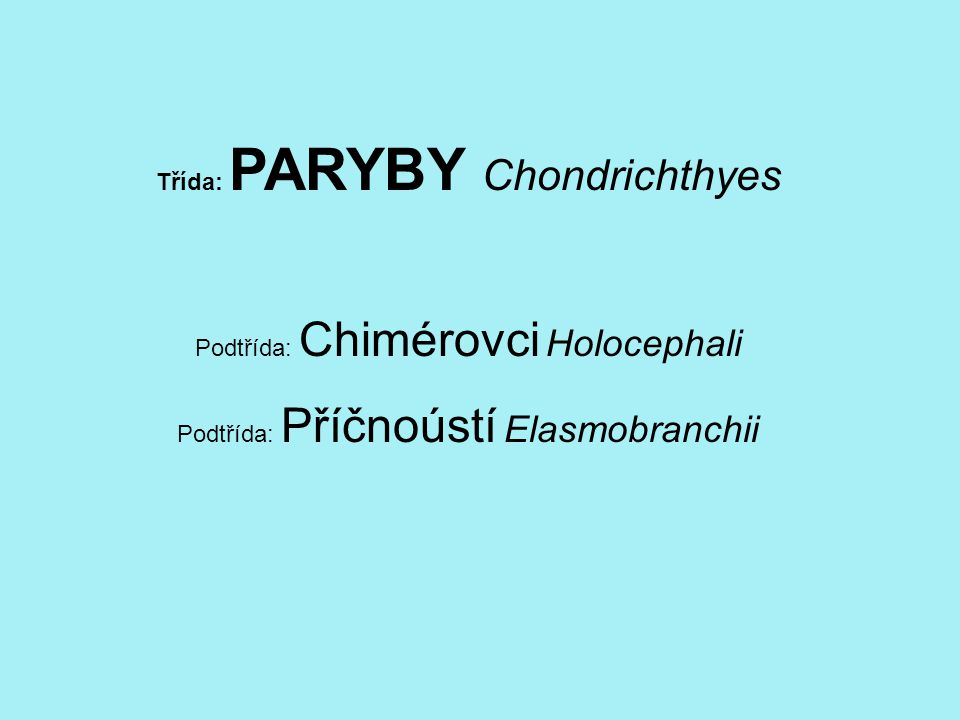 Podtřída: Chimérovci Holocephali Řád: CHIMÉROTVÁRNÍ Chimaeriformes Čeleď: CHIMÉROVITÍ Chimaeridae Chiméra podivná Chimaera monstrosa