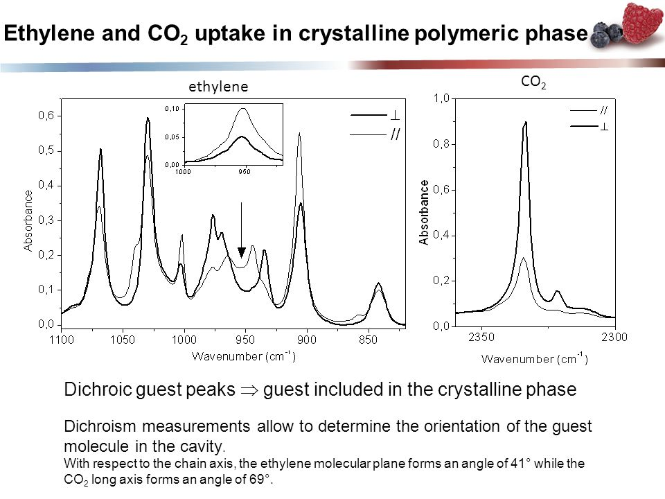 Ethylene and CO 2 uptake in crystalline polymeric phase Dichroic guest peaks  guest included in the crystalline phase Dichroism measurements allow to