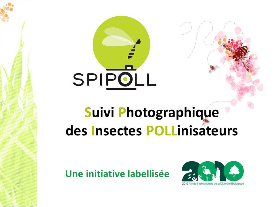 Suivi Photographique des Insectes POLLinisateurs Une initiative labellisée