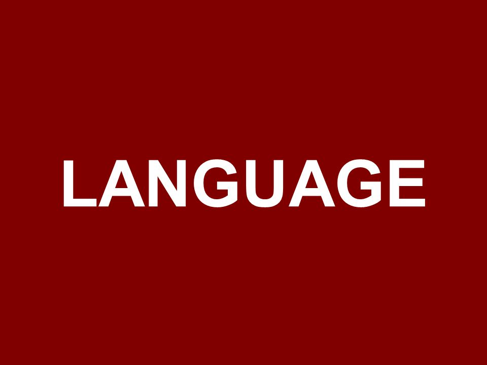 official languages are Finnish and Swedish Finnish is the native tongue of 94% of the population and Swedish is the native tongue of 5% of the population the only official minority language is Sami other common languages are Russia and Estonia