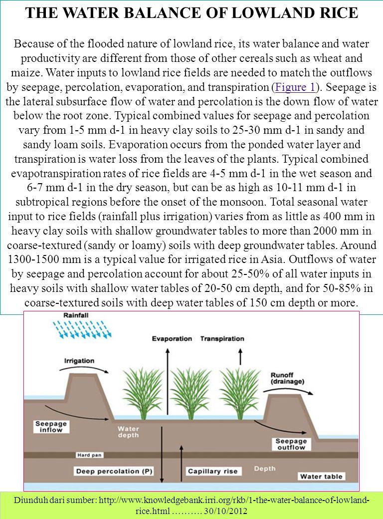 Diunduh dari sumber: http://www.knowledgebank.irri.org/rkb/1-the-water-balance-of-lowland- rice.html ………. 30/10/2012 THE WATER BALANCE OF LOWLAND RICE