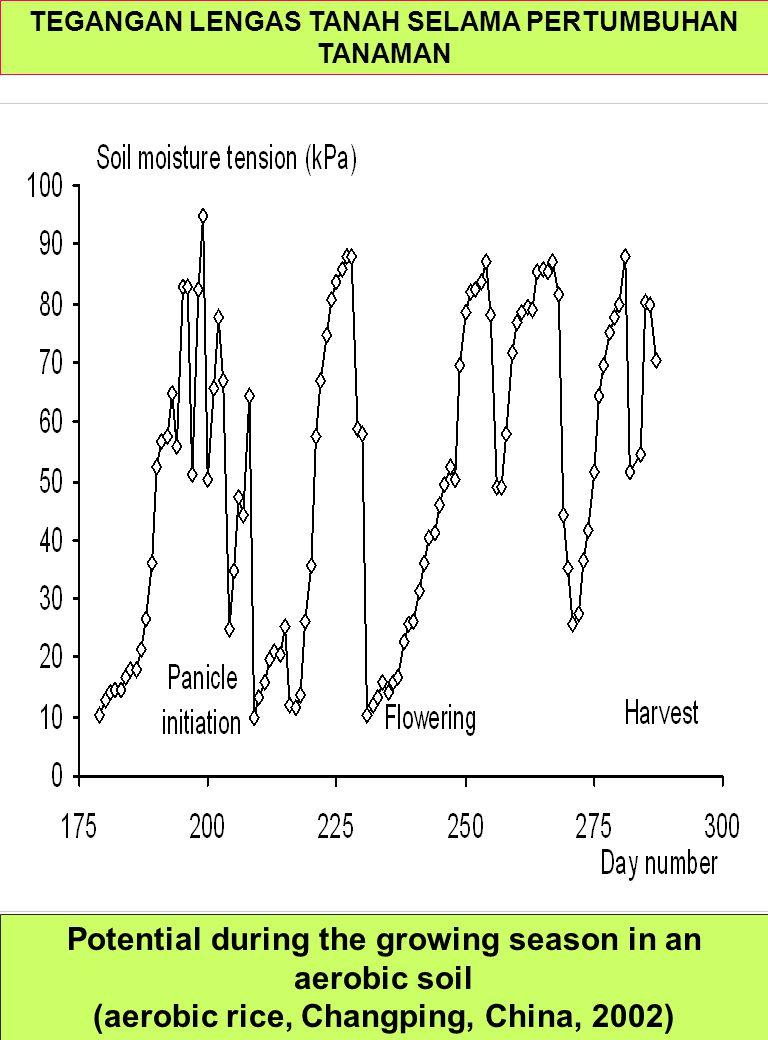 Potential during the growing season in an aerobic soil (aerobic rice, Changping, China, 2002) TEGANGAN LENGAS TANAH SELAMA PERTUMBUHAN TANAMAN
