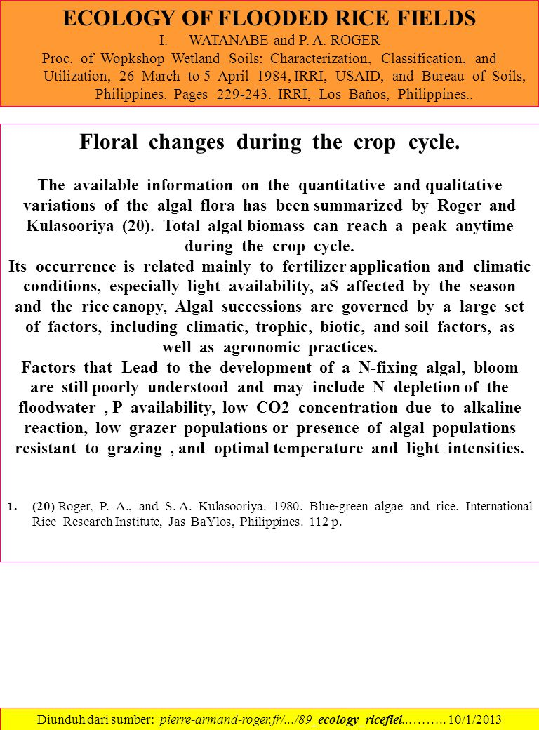 ECOLOGY OF FLOODED RICE FIELDS I.WATANABE and P.A.