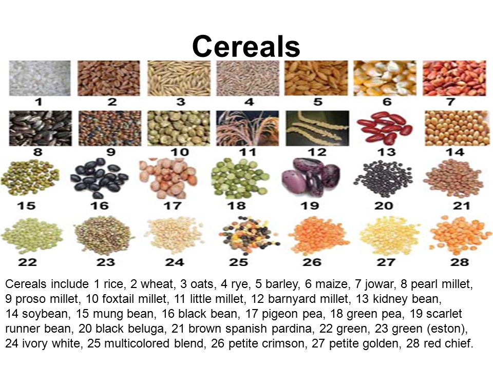 Cereals Cereals include 1 rice, 2 wheat, 3 oats, 4 rye, 5 barley, 6 maize, 7 jowar, 8 pearl millet, 9 proso millet, 10 foxtail millet, 11 little millet, 12 barnyard millet, 13 kidney bean, 14 soybean, 15 mung bean, 16 black bean, 17 pigeon pea, 18 green pea, 19 scarlet runner bean, 20 black beluga, 21 brown spanish pardina, 22 green, 23 green (eston), 24 ivory white, 25 multicolored blend, 26 petite crimson, 27 petite golden, 28 red chief.