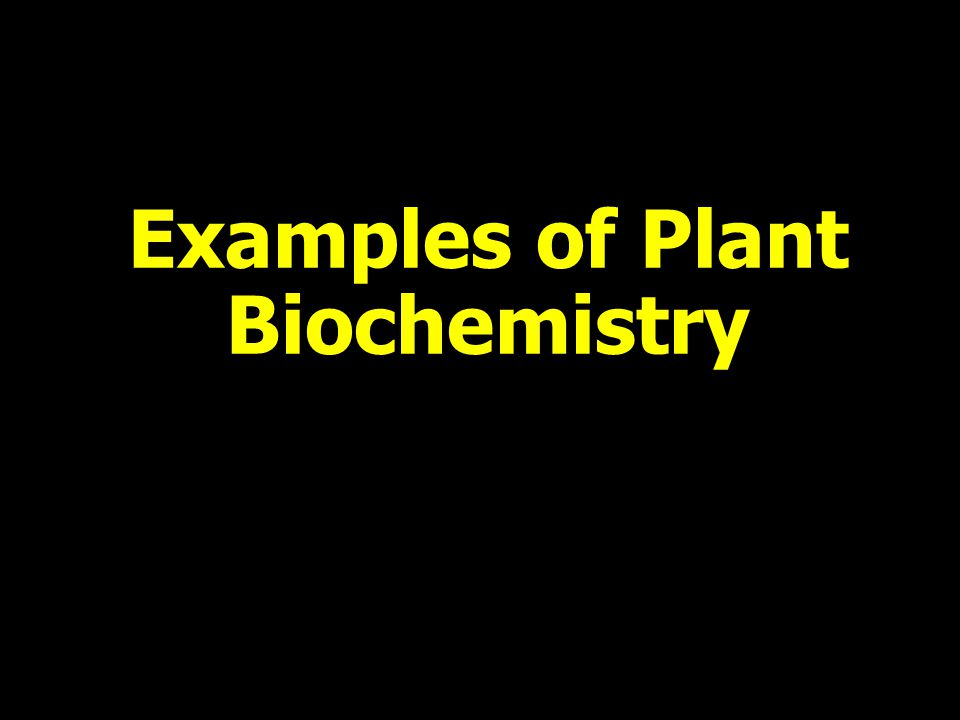 Examples of Plant Biochemistry