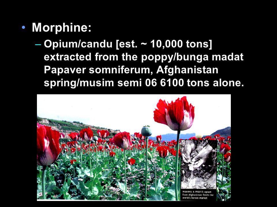 Morphine: –Opium/candu [est.