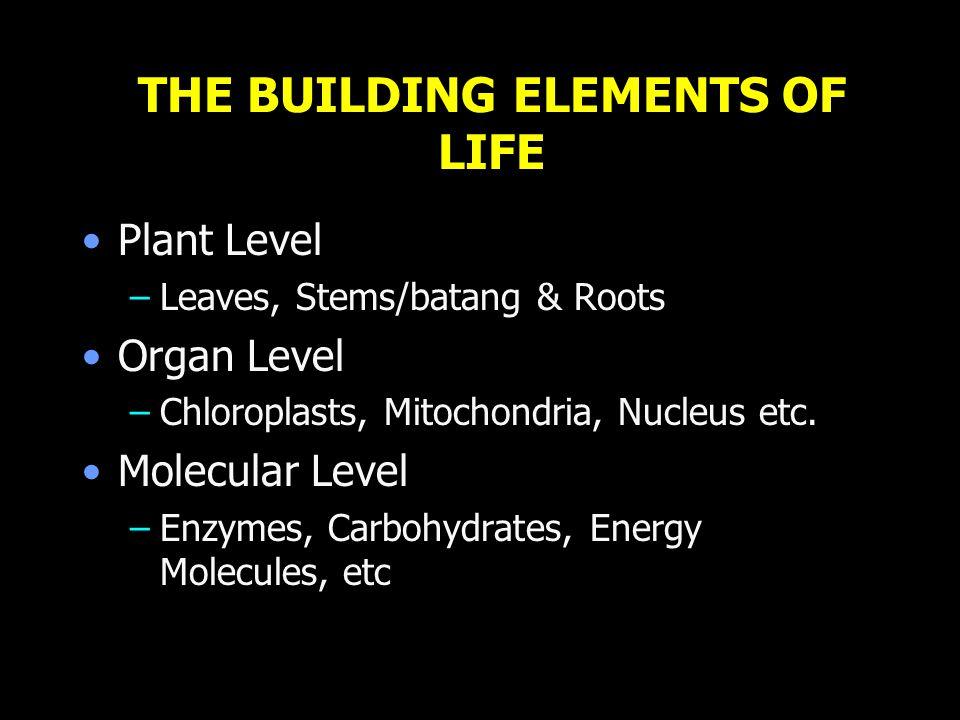 Cyanide/sianida Poisoning/racun Disrupts/mengganggu metabolism by inhibiting/menghalangi metal/logam containing/berisi enzymes, most notably/khususnya, cytochrome oxidase.